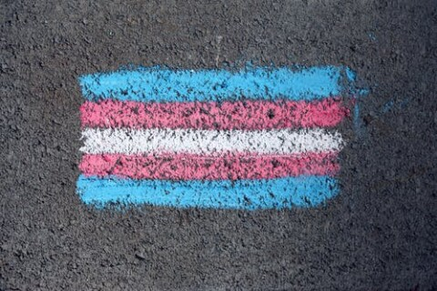 Practical Advice for Transgender and Nonbinary Folks Navigating the Job Search (The Muse)
