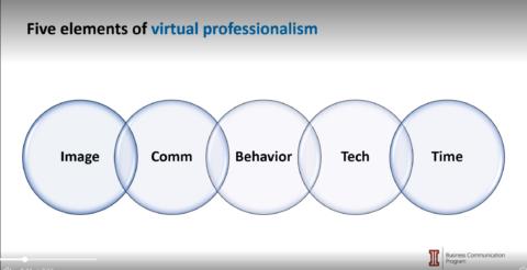Virtual Professionalism
